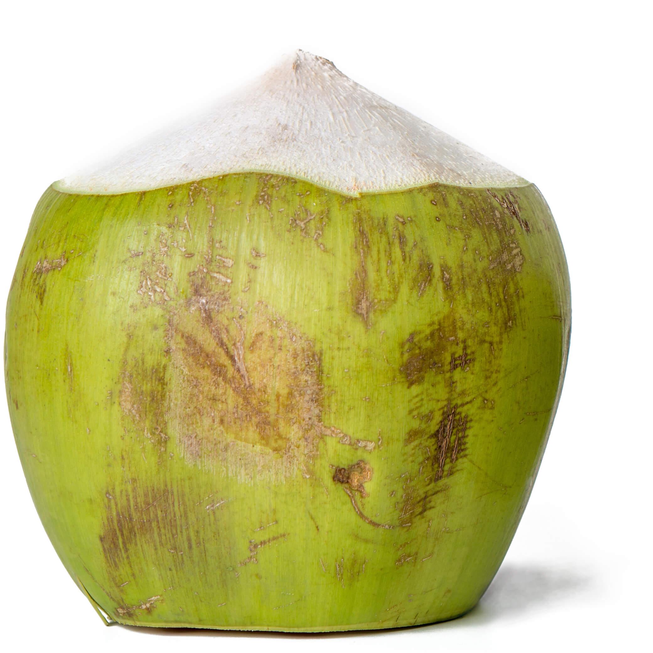 Cocco verde su fondo bianco